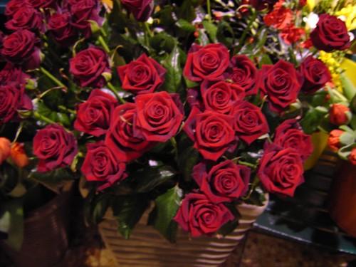 Ben noto Rose rosse, no grazie | TViWeb DY91