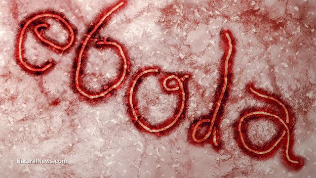 ebola arcugnano prefetto